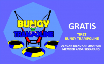Bungy Trampoline